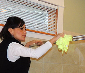 Houses Cleaning Services - Bellingham Area